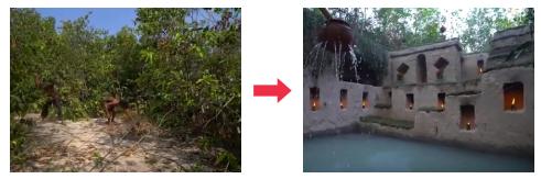 ジャングルからプール