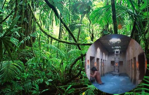 ジャングルとプール